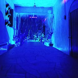 اتاق ماساژ